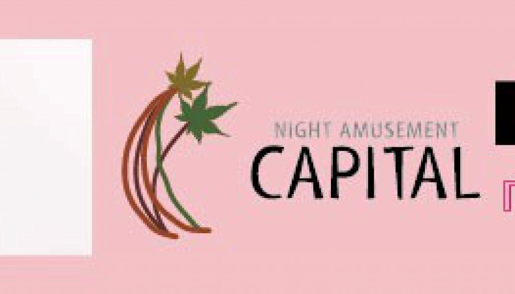 capitalblog_smart